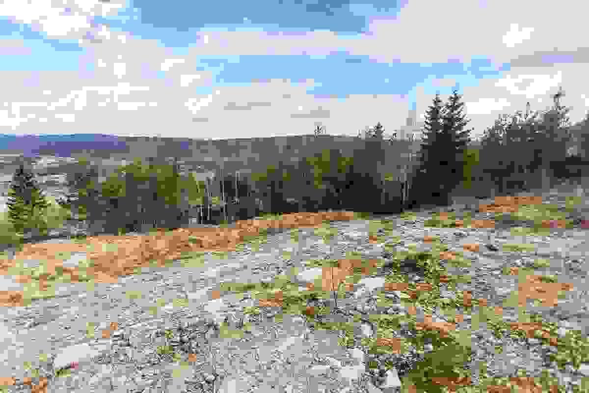 Bilde av Alpinveien