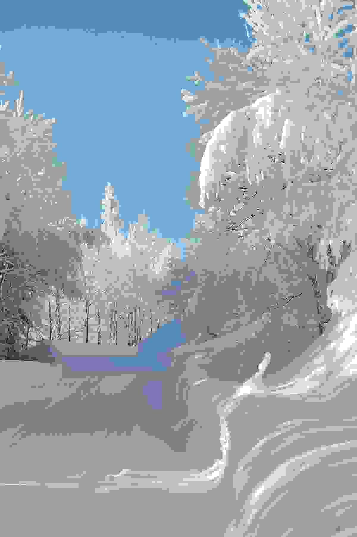 Områdebilde - Stølevei i snø og sol 2012