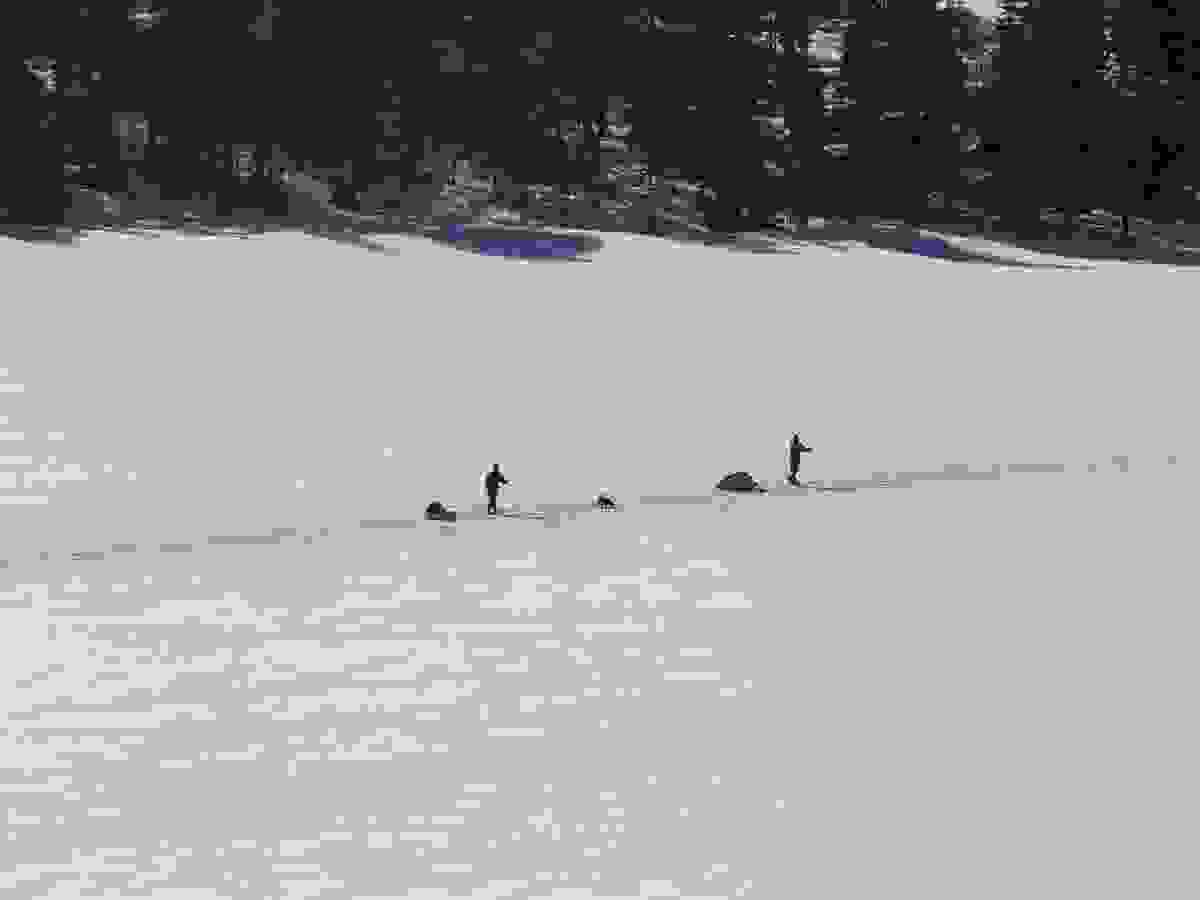 Områdebilde -Skiløpere med pulk på Lille Stølevann