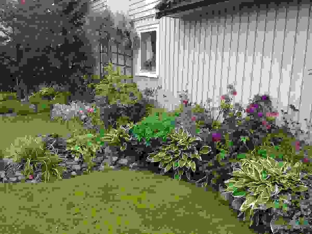 Stauder og blomster i skjønn harmoni