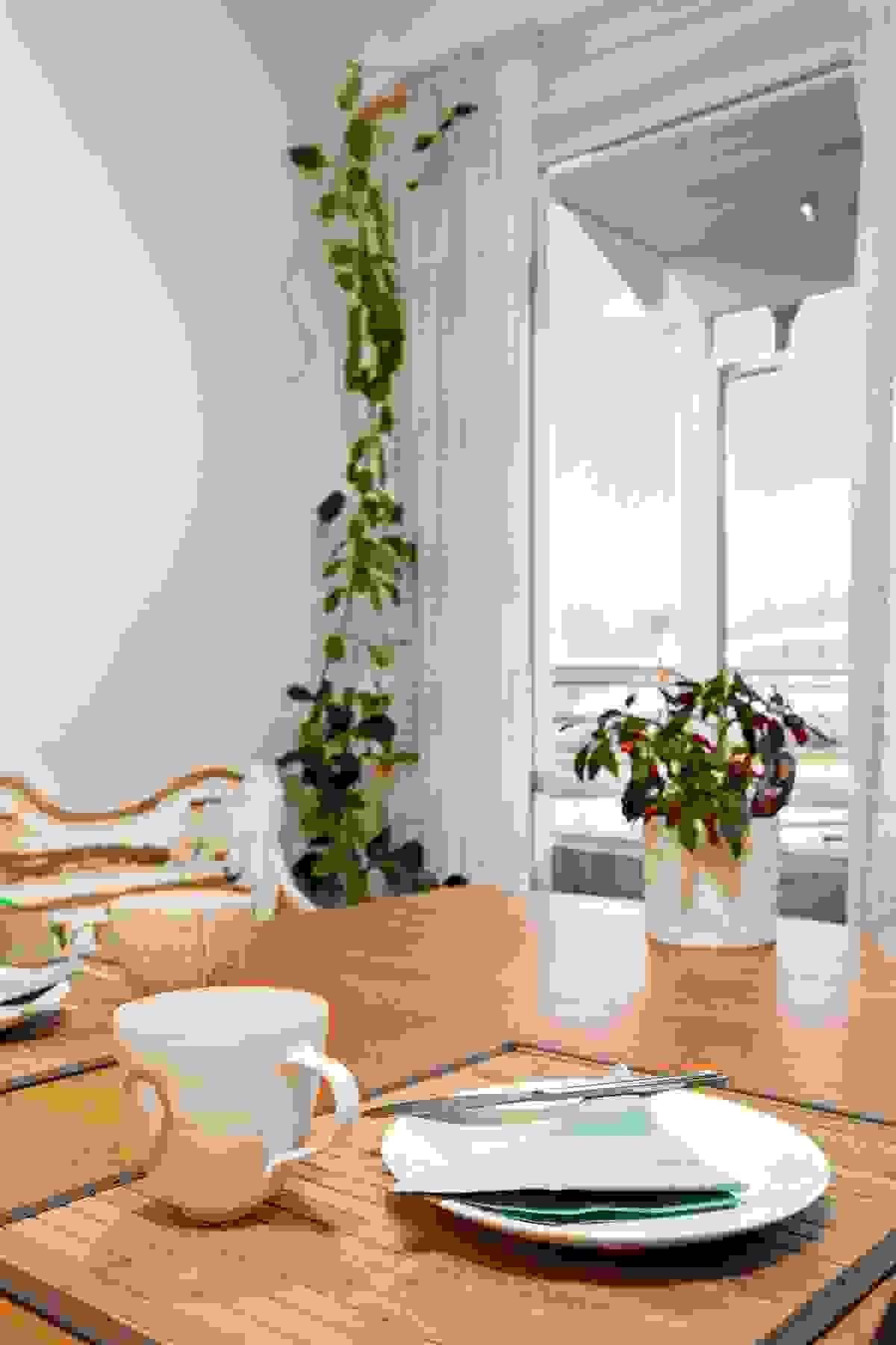 Fra spiseplassen har man hyggelig utsyn mot hagen
