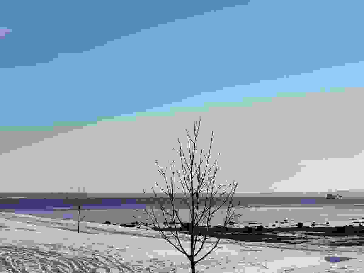 Vintersteming ved Steinsnesbukta