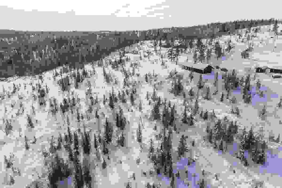 Fjellseterlia - Februar 2019
