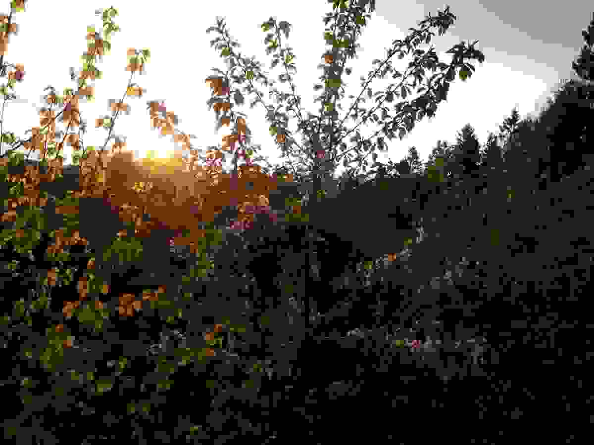 Å se solnedgangen i vest er et vakkert skue