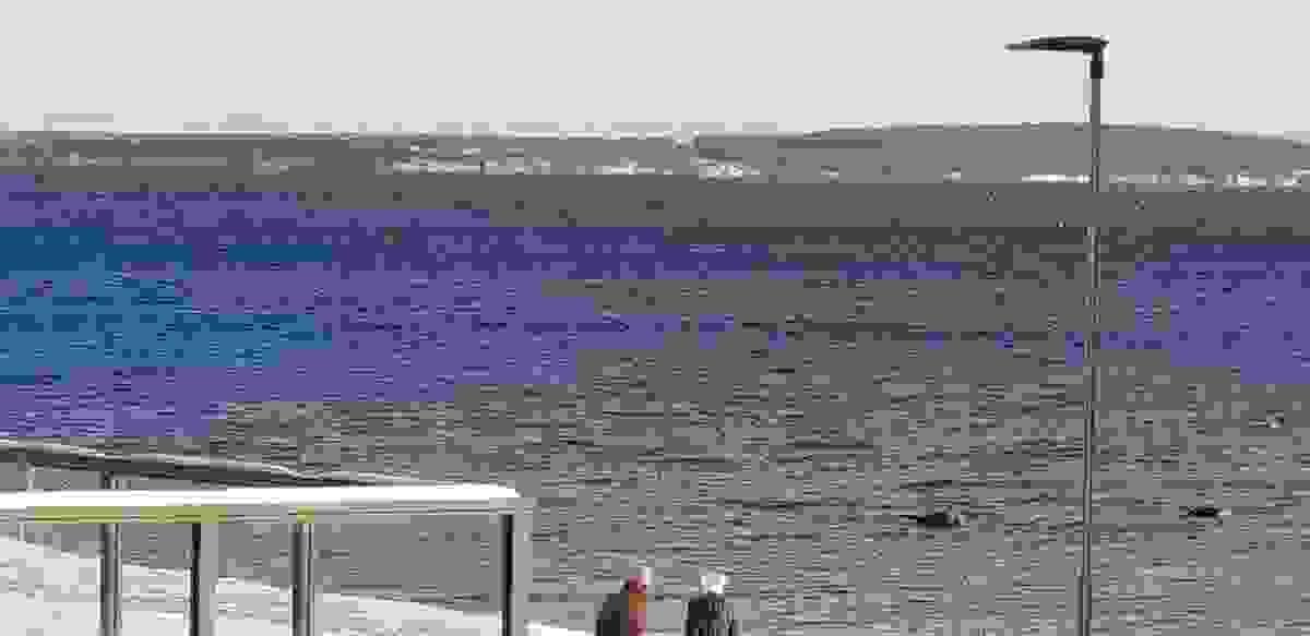 Oslofjorden og sjølivet kan du nyte fra denne herlige beliggenheten