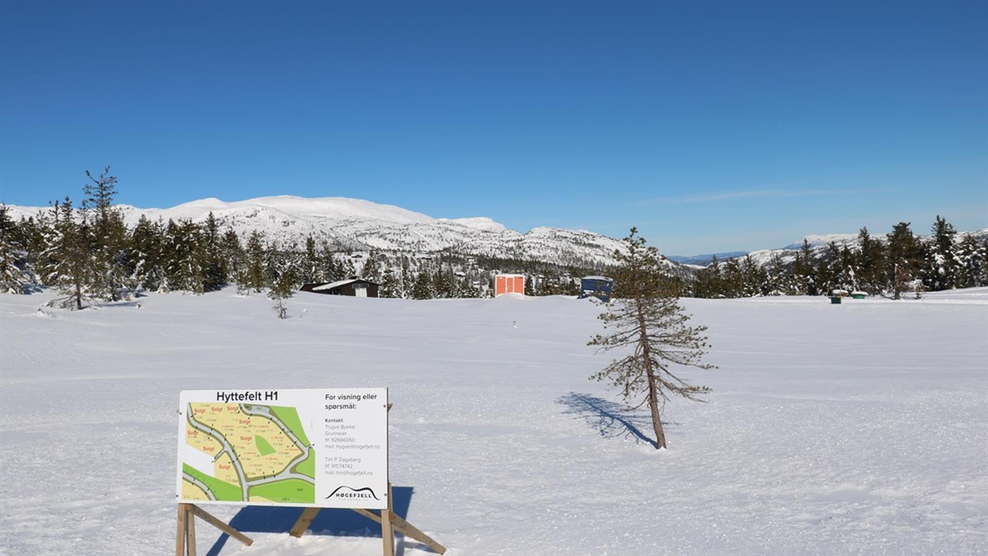 Høgefjell Panorama, Lifjell