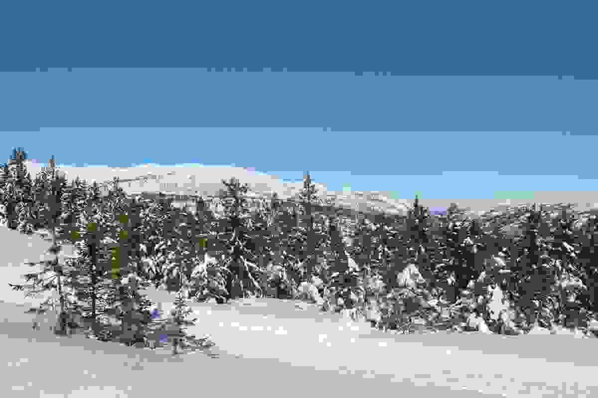 Utsikt fra tomtefeltet