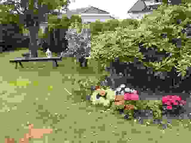 Sommerbilde fra den flotte hagen
