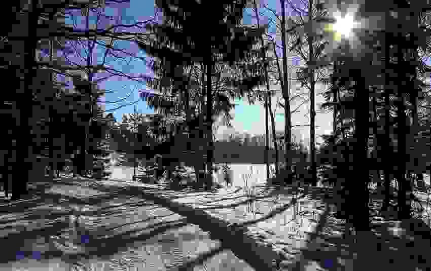 Omdårdebilde - Skispor i Teieskogen